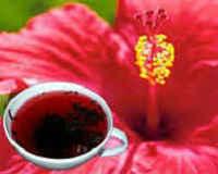 Чай каркаде - полезные свойства и противопоказания