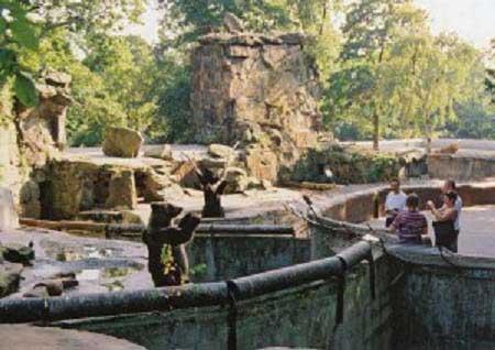 Kaliningradskiy-zoopark..