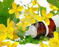 Чистотел от папиллом - эффективное природное средство