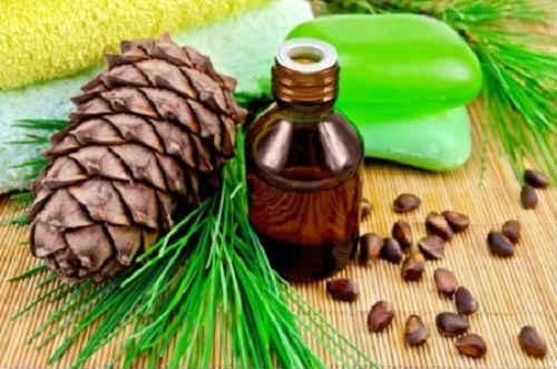 полезные свойства кедрового масла