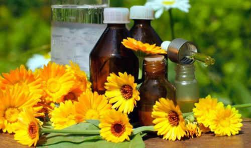 maslo-kalenduly-lechebnye-svojstva