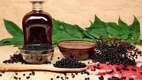 tsvetki-chernoj-buziny-lechebnye-svojstva-i-protivopokazaniya