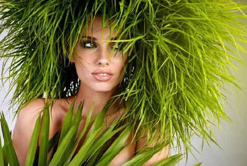 хвощ полевой лечебные свойства для волос