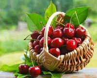 как варить варенье из вишни