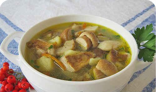 суп из свежих грибов с вермишелью рецепт