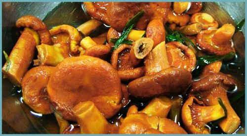 грибы лисички рецепты приготовления с фото на зиму