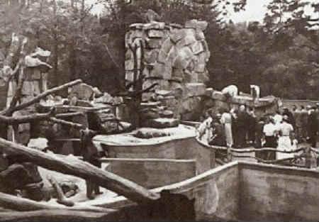 Kenigsbergskiy-zoopark