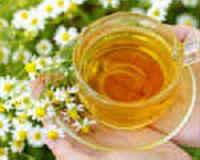 Лекарственные травы для похудения сжигающие жир