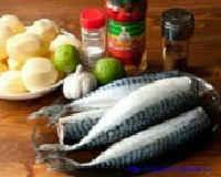 Как приготовить скумбрию - рецепты в духовке, фольге