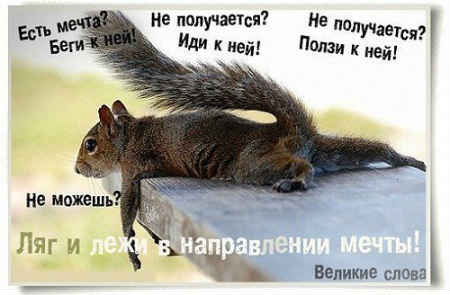 цельи
