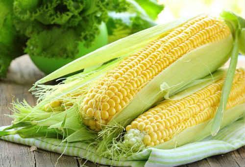 кукуруза маринованная в початках