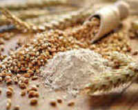 Полба - полезные свойства крупы, противопоказания, рецепты приготовления