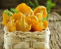 Лисички с картошкой жареные — рецепты в сметане, с луком, майонезом