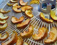 яблоки сушеные в электросушилке