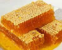Мёд в сотах — польза и вред, как хранить, принимать