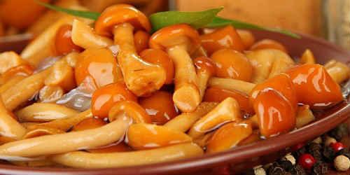 solenye-opyata