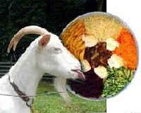 салат козел в огороде рецепты