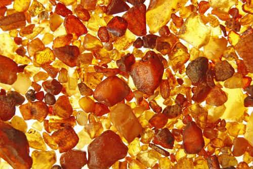 янтарная кислота польза и вред