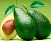 Авокадо - польза и вред для здоровья организма, похудения, масло, как едят