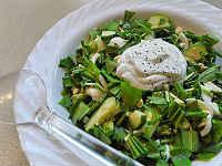 Салаты из черемши - простые и вкусные рецепты